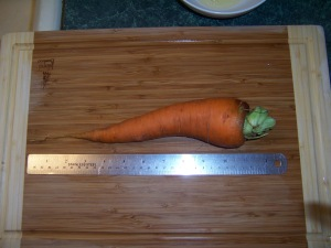 foot long garden carrot 001