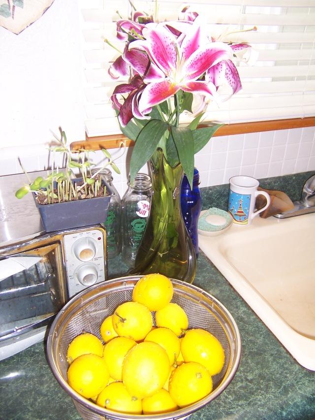lemons 001